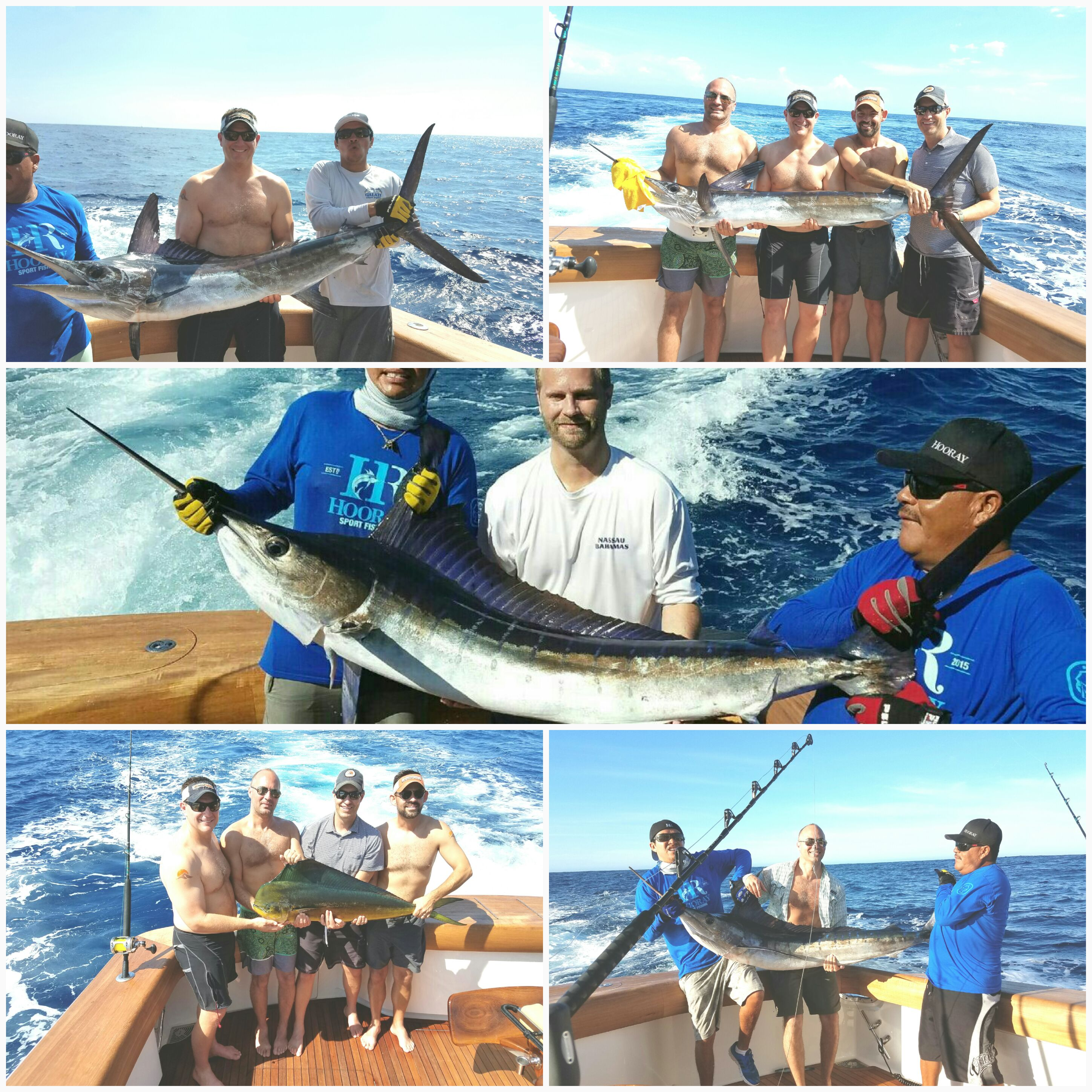 2016 Deep Sea Fishing Cabo Arrived Outdoors